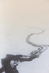 Alaska-B---Ozzie-Hoppe
