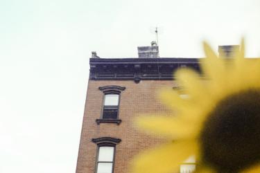 New-York-City---Ozzie-Hoppe-ics_020