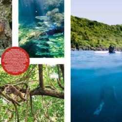 National-Geographic-Traveler-India---Ozzie-Hoppe---Taiwan-2